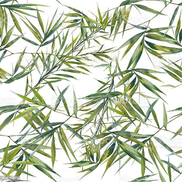 Watercolor illustration of bamboo leaves seamless pattern picture id623750020?b=1&k=6&m=623750020&s=612x612&h=4jlgy3j7uyldt xc hgyxxofsb7dolwtqp9 cg4ikea=