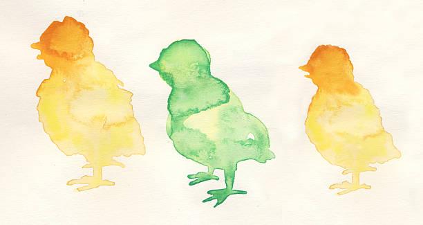 aquarell illustration ostern küken - lustiges huhn bilder stock-fotos und bilder