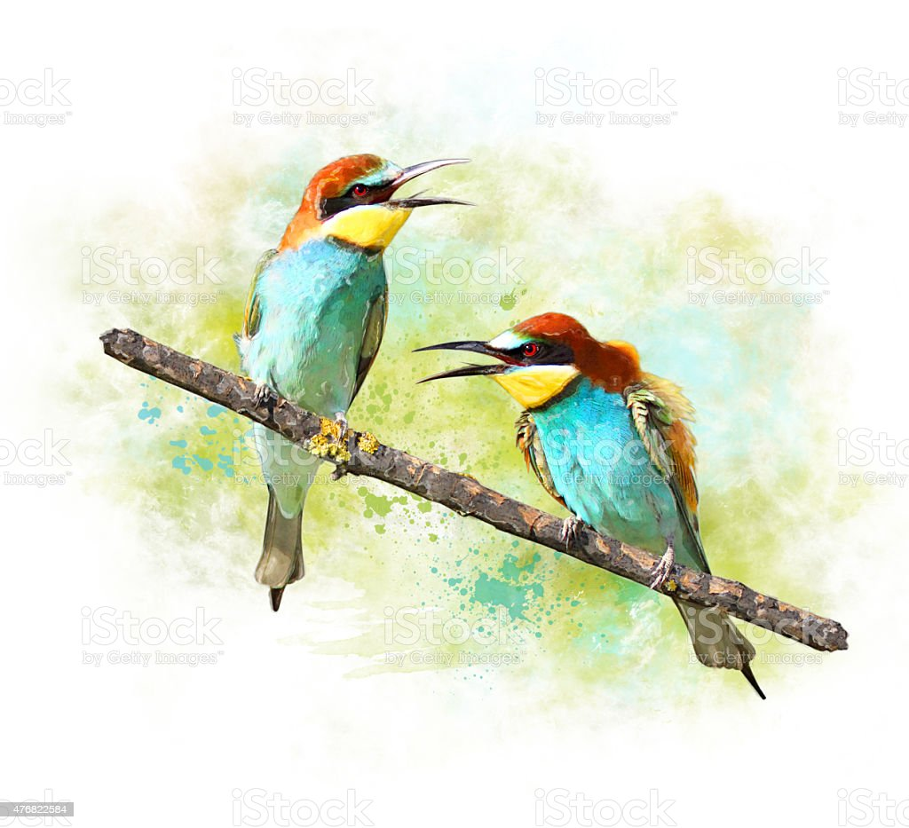 Watercolor Image of birds Bee-eaters stock photo