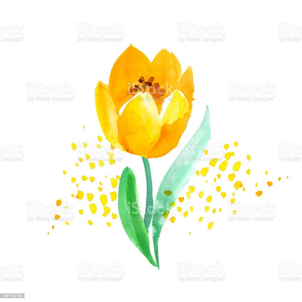 Suluboya Saf Atyle Lale çiçek Boyama Yazdırma Kart Dekor Davet Için