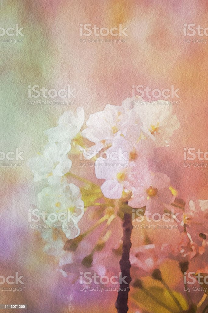 Watercolor Painted Flower Background, Vertical with Copy Space stock photo
