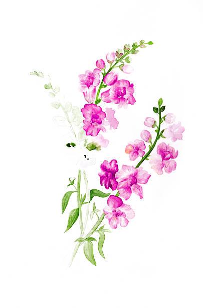 Aquarell Blumen  – Foto