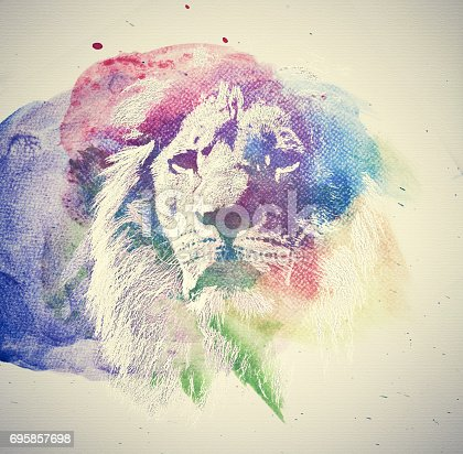 istock Watercolor painting of lion. Abstract, colorful art. 695857698