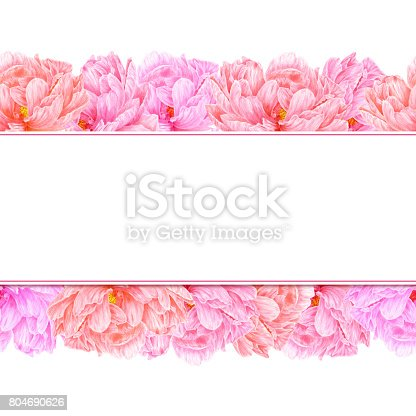 istock Watercolor pink peony. Botanical art. Template for a business card, banner, poster, flyer, notebook, cosmetics, perfume, greeting card or wedding invitation 804690626