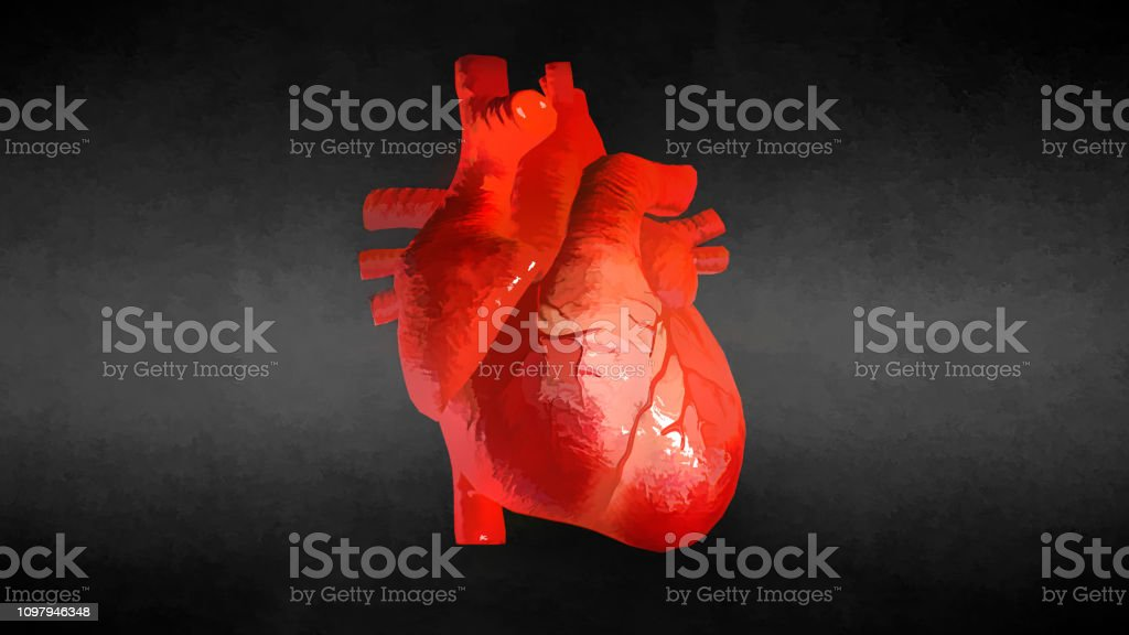 Watercolor Realistic Human Heart On Black Background. 3D illustration stock photo