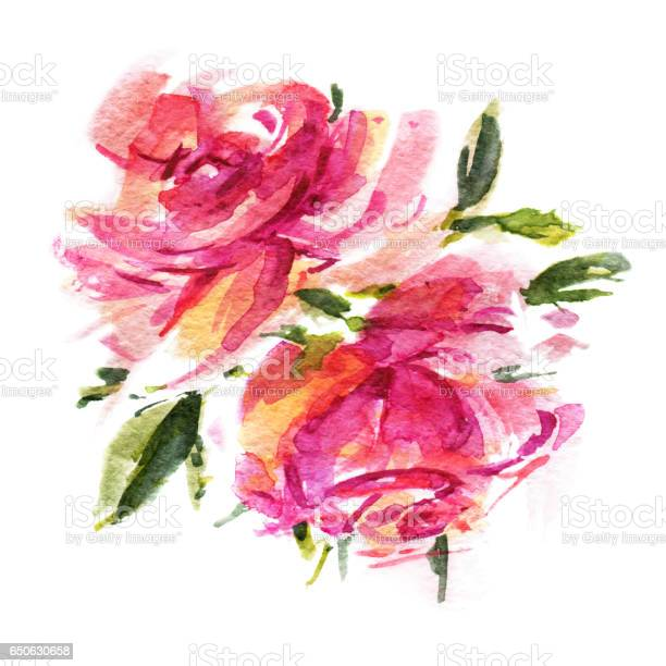 Watercolor roses picture id650630658?b=1&k=6&m=650630658&s=612x612&h=4tnn1xuaqno8uvweeqknzcdrm57qygje6ledcmylvg0=