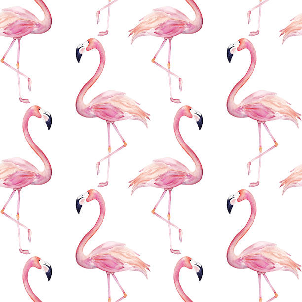 Watercolor seamless pattern with  flamingo - Photo