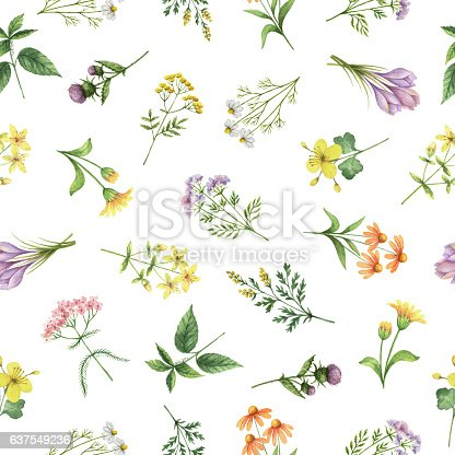 istock Watercolor seamless pattern with flowers and branches. 637549236