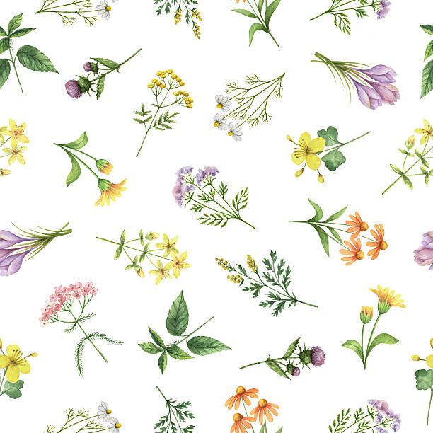 Watercolor seamless pattern with flowers and branches. - foto stock