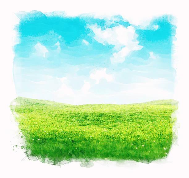 aquarell himmel und gras hintergrund - farbfeldmalerei stock-fotos und bilder