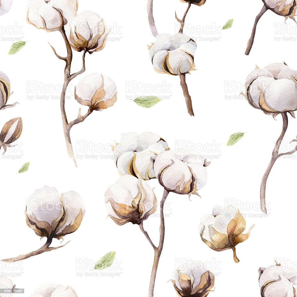 Watercolor vintage background with twigs and cotton flowers boho stock photo