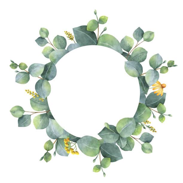 Aquarell Kranz mit Silber-Dollar-Eukalyptus-Blätter und Zweige. – Foto