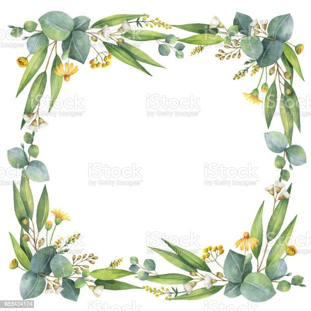 Watercolor wreath with silver dollar eucalyptus leaves and branches picture id653424174?b=1&k=6&m=653424174&s=612x612&h=rwxfdcved2glb 4g8uf28e2gf5nx2xb qwfs0mz5rjw=