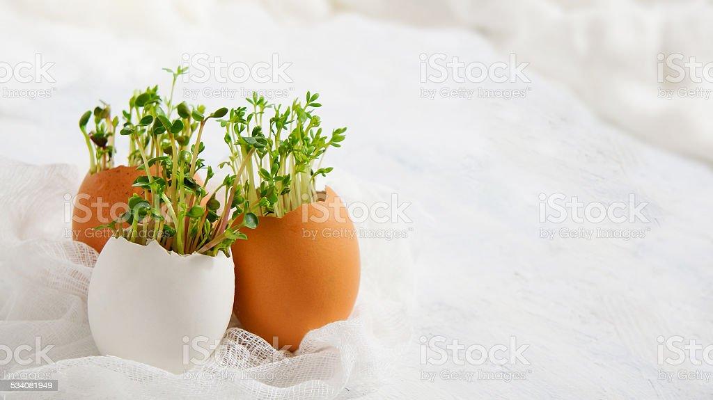 Salada de agrião e eggshells-Cartão de Páscoa - foto de acervo