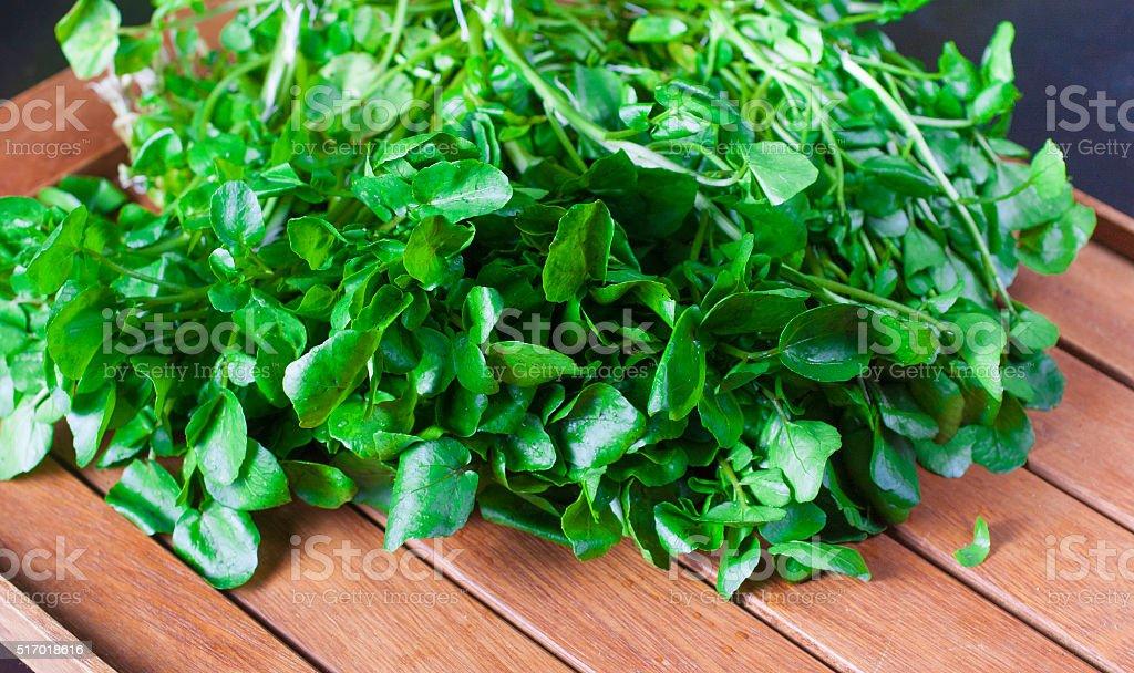 Berro ingredientes de ensalada - foto de stock