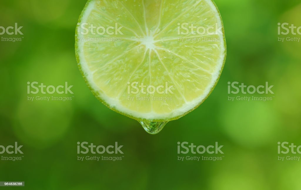 waterdrop falling on limes green background royalty-free stock photo