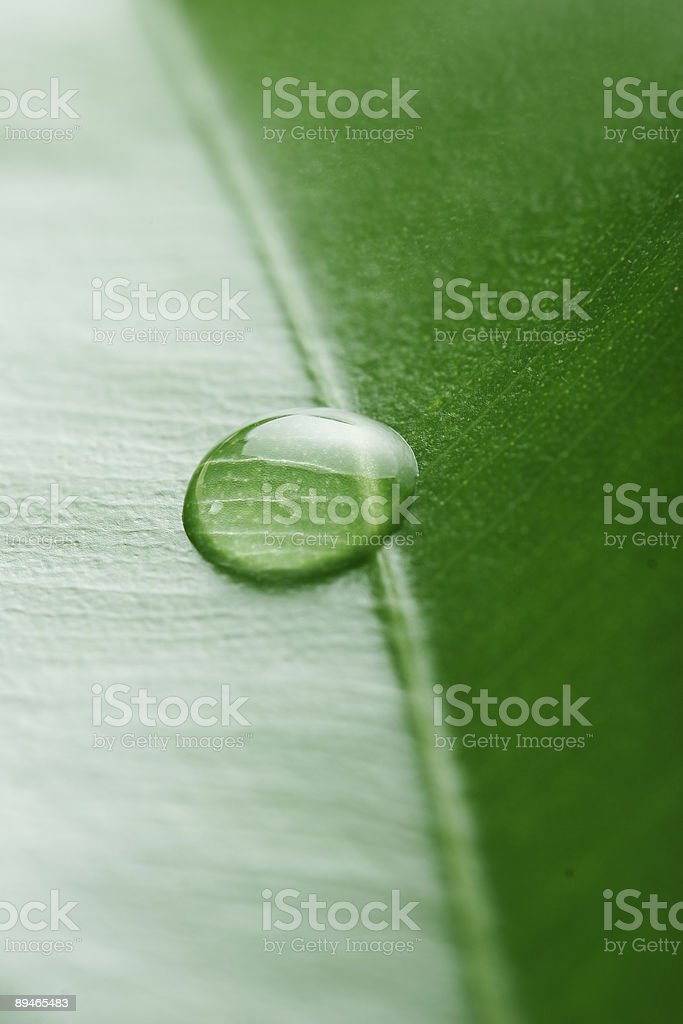 waterdrop royalty-free stock photo