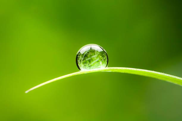 waterdrop. wasser tropfen blatt umweltschutz gleichgewicht grün natur - gleichgewicht stock-fotos und bilder