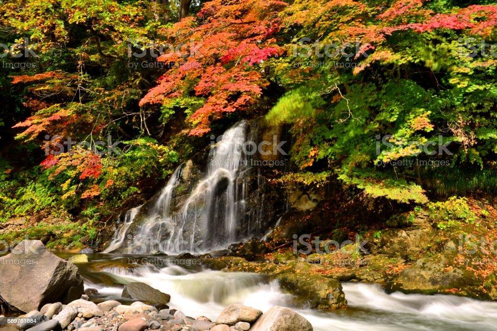 Waterfall and Autumn Foliage at Nakano Momijiyama, Kuroishi, Aomori Prefecture stock photo