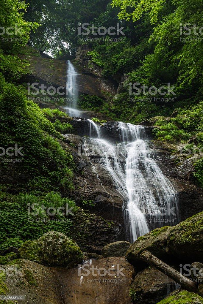 Waterfall and fresh green (Karakai no taki in Japan) photo libre de droits