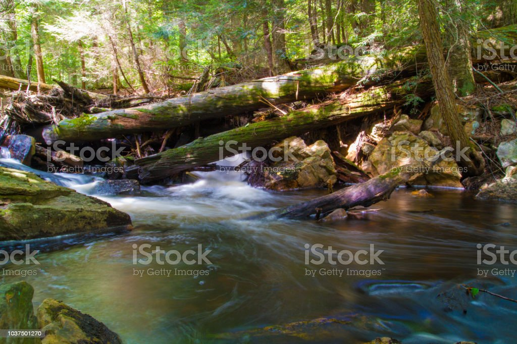 Waterfall And Fresh Water Stream Flowing Through Forest Landscape - fotografia de stock