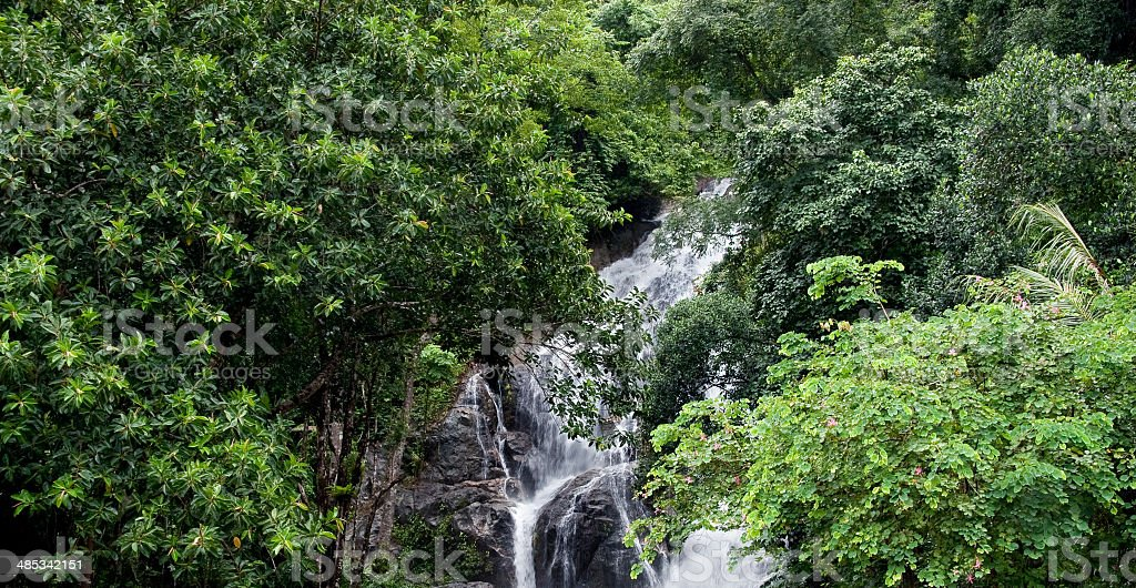 Waterfall  and Green Forest in Rainy Season royalty-free stock photo