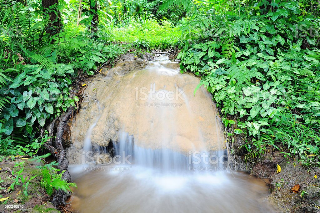 waterfall and green trees stock photo
