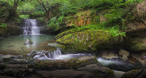 Waterfall at Dinas Rock Sgydau Sychryd or the Sychryd Cascades is a set of waterfalls near Pontneddfechan, South Wales. brecon beacons stock pictures, royalty-free photos & images