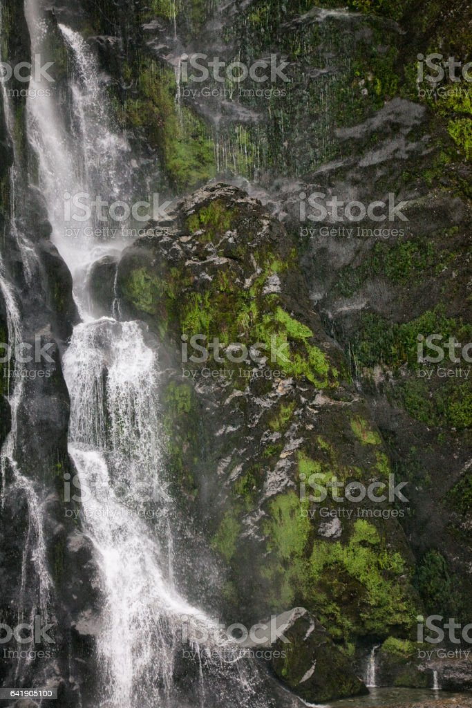 Waterfall At Milford Sound In Fiordland National Park New Zealand Stock Photo Download Image Now