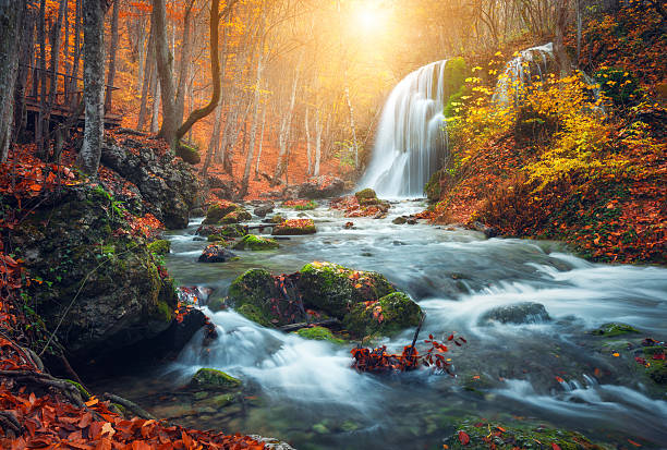 waterfall at mountain river in autumn forest at sunset. - waterfall stock photos and pictures