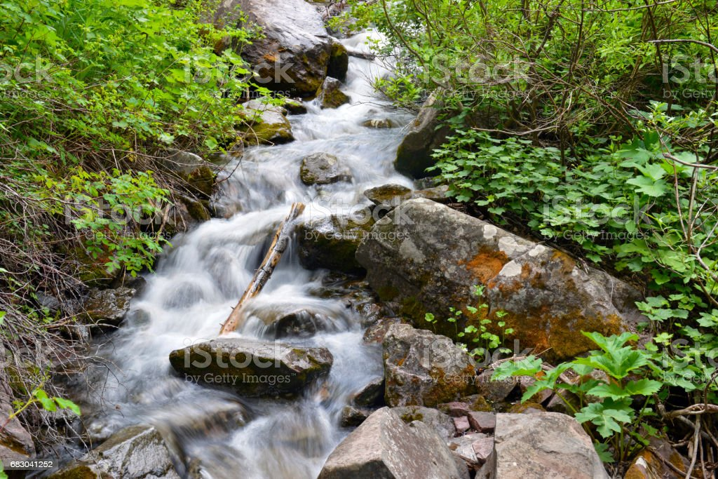 Waterfall cascade and stream in a high elevation forest in Rocky Mountains, a source of clean pure water for hikers and backpackers, though needs filtration before drinking foto de stock royalty-free