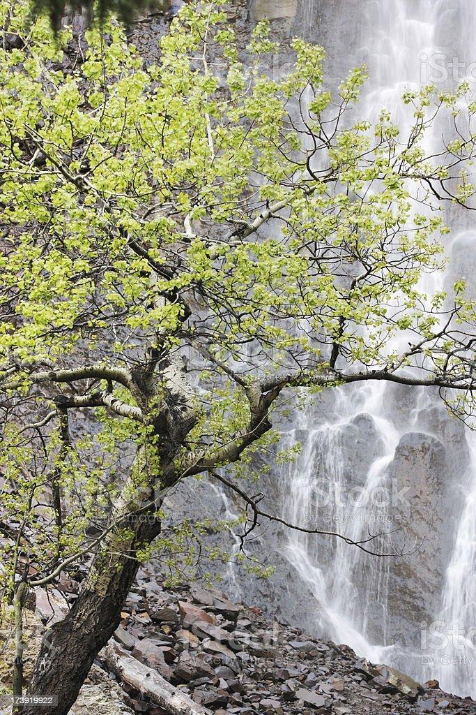 Waterfall Cliff Scenic Canyon stock photo