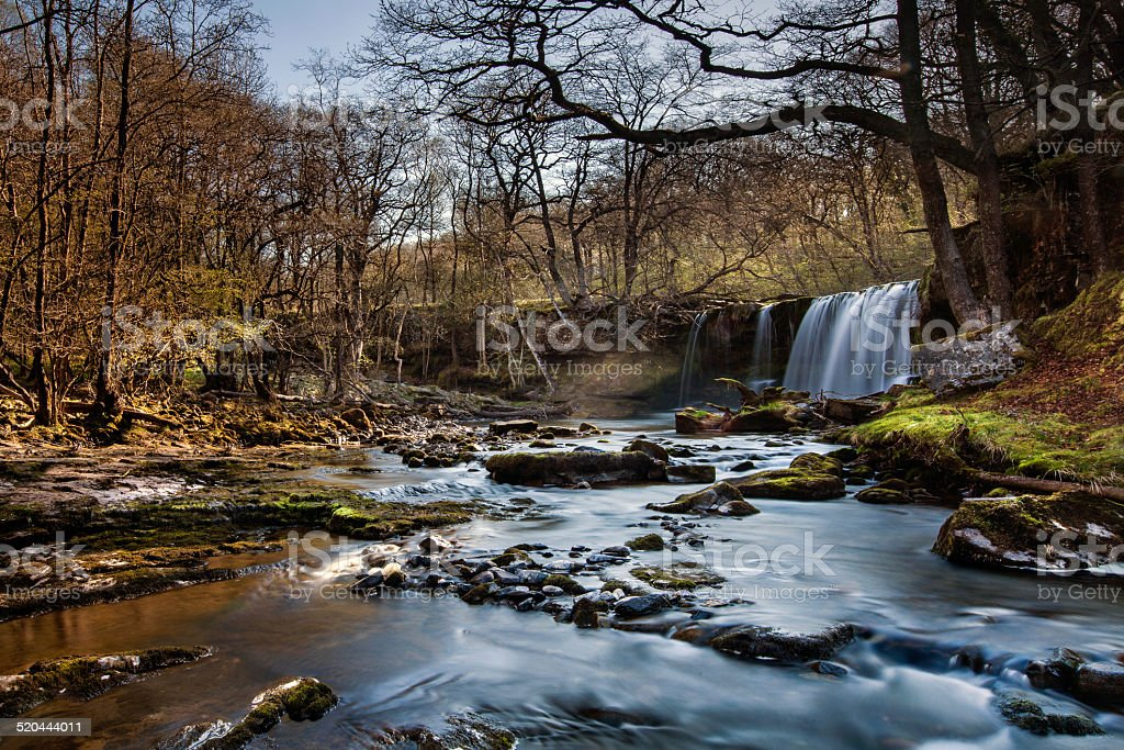 Waterfall in a forest stock photo