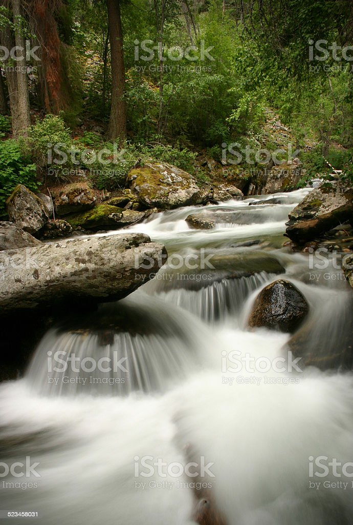 Waterfall in a Montana Forest stock photo