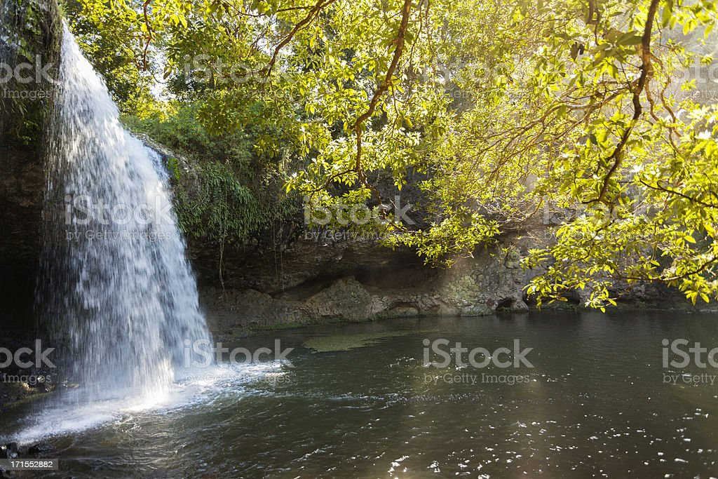 Waterfall in a Stream royalty-free stock photo