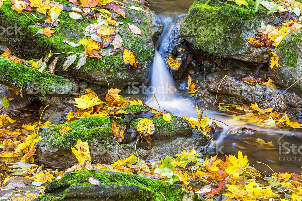 Waterfall in a stream with autumn leaves royalty-free stock photo