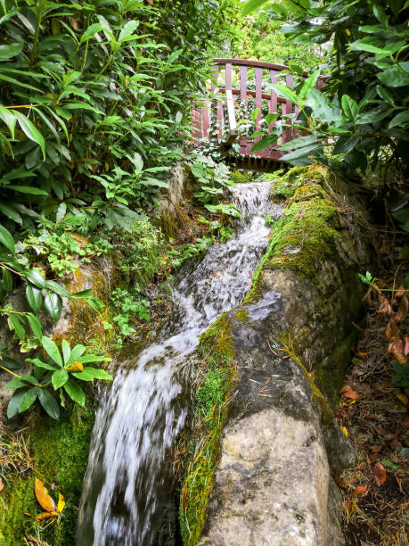 Waterfall in a woodland with a bridge stock photo