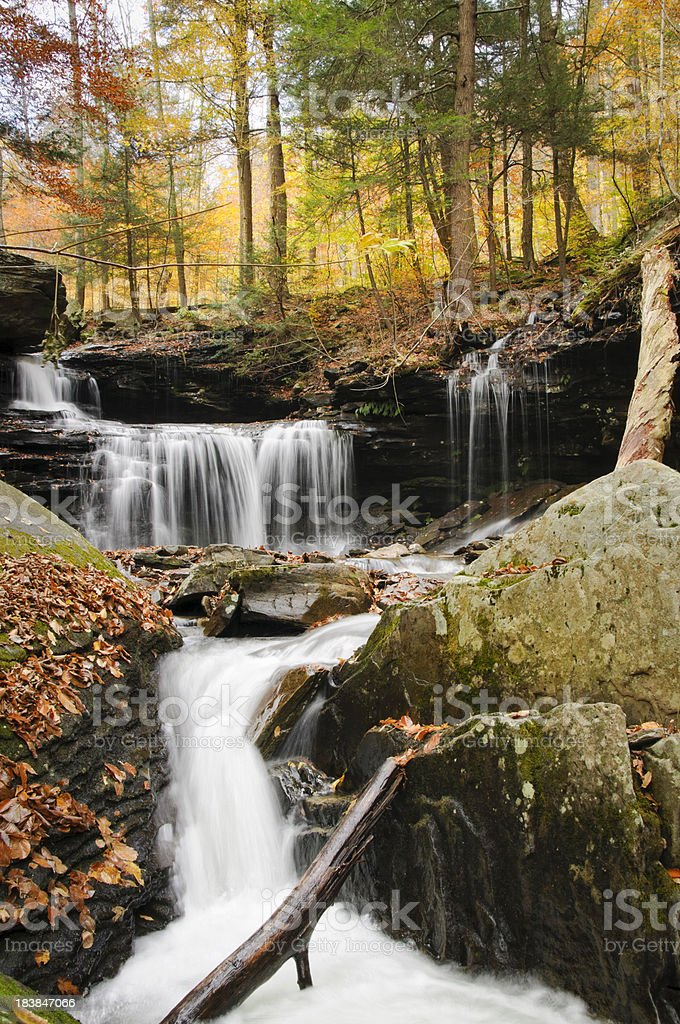 Waterfall in Autumn forest. stock photo