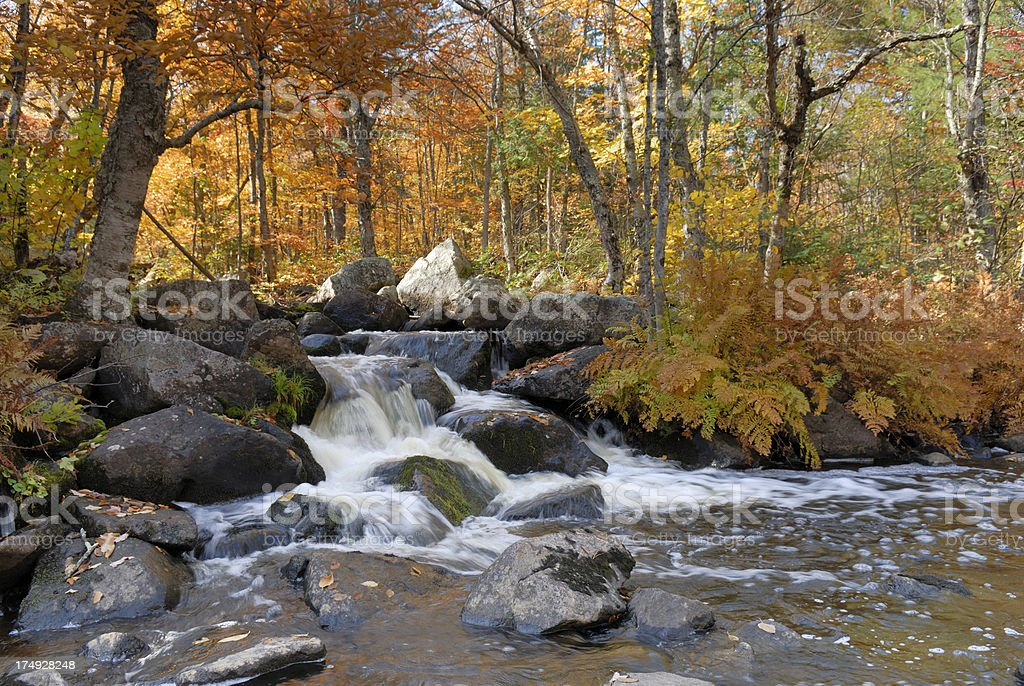 Waterfall in beautiful Autumn setting royalty-free stock photo