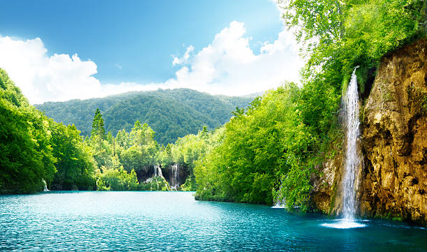 waterfall in deep forest - waterfall stock photos and pictures