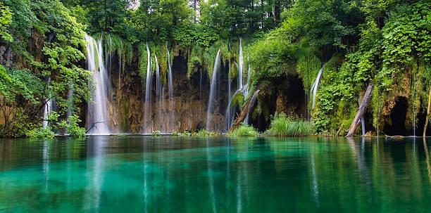 wasserfall im wald. kristallklarem wasser. nationalpark plitvicer seen, kroatien - nationalpark plitvicer seen stock-fotos und bilder