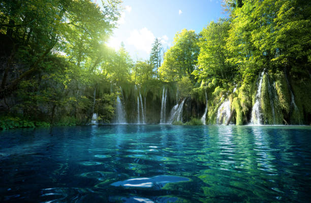 waterfall in forest, plitvice lakes, croatia - waterfall stock photos and pictures