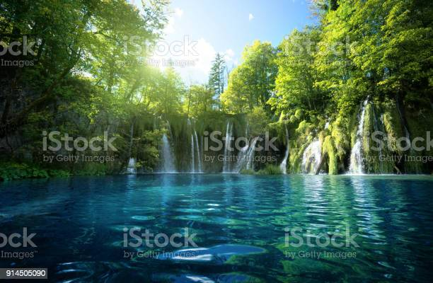 Photo of waterfall in forest, Plitvice Lakes, Croatia