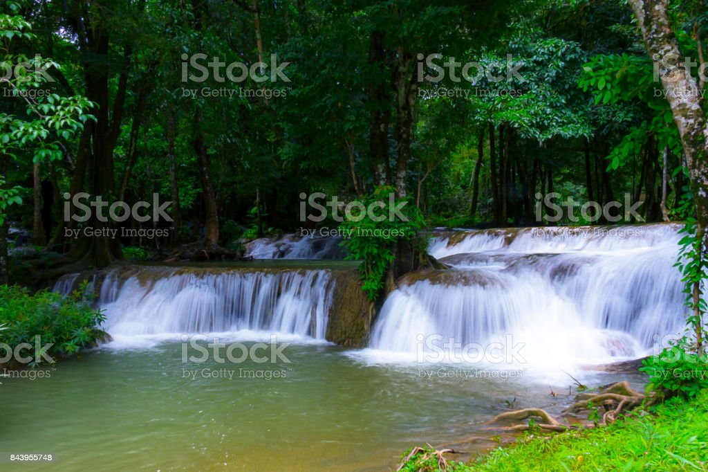 Waterfall in green forest and the rain stock photo