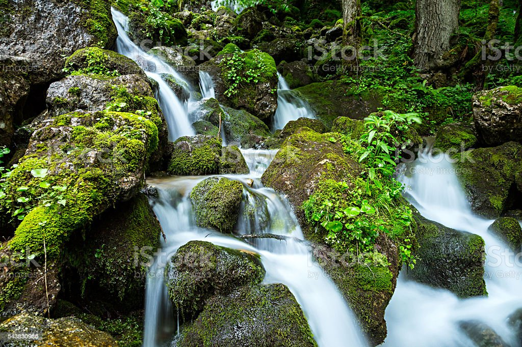 waterfall in green forest stock photo