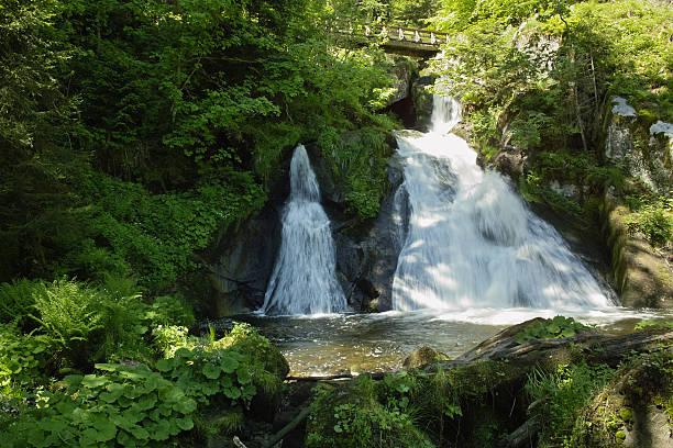 Wasserfall im grünen Wald Triberger Wasserfälle – Foto