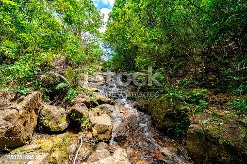 Waterfall in Kam Shan Country Park, Hong Kong
