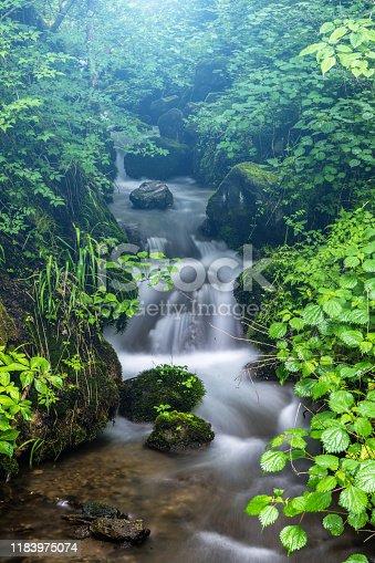 Japan, Karuizawa, Nagano Prefecture, Alternative Therapy, Autumn