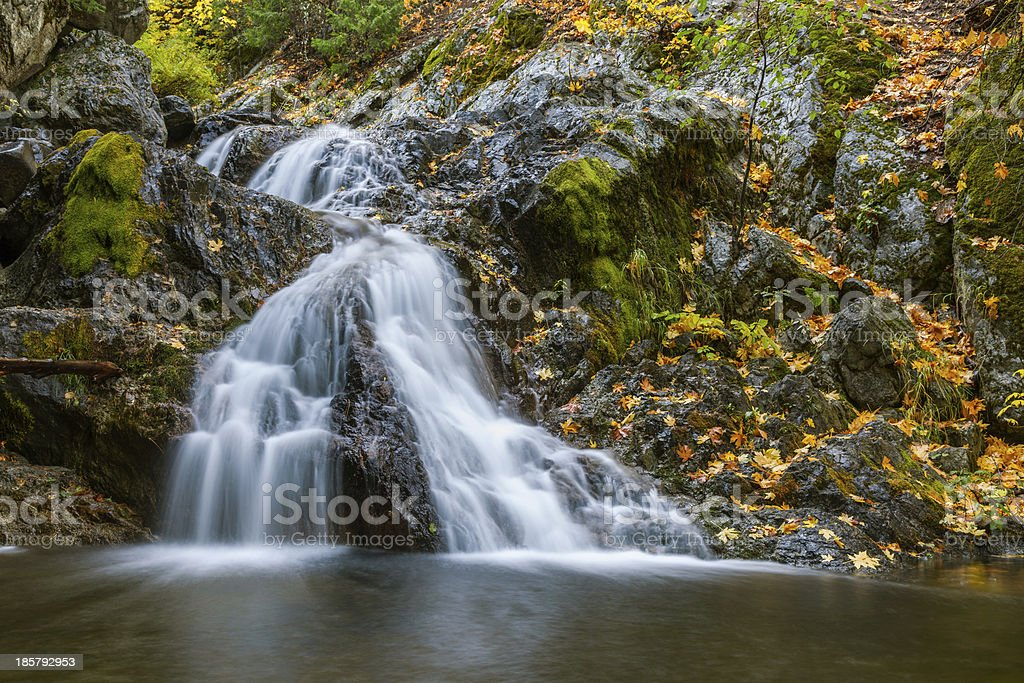 Waterfall in Mt Shasta royalty-free stock photo