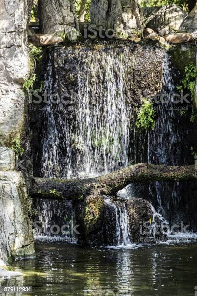 Photo of Waterfall in nature